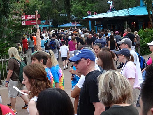 A big crowd at the rope drop at Animal Kingdom