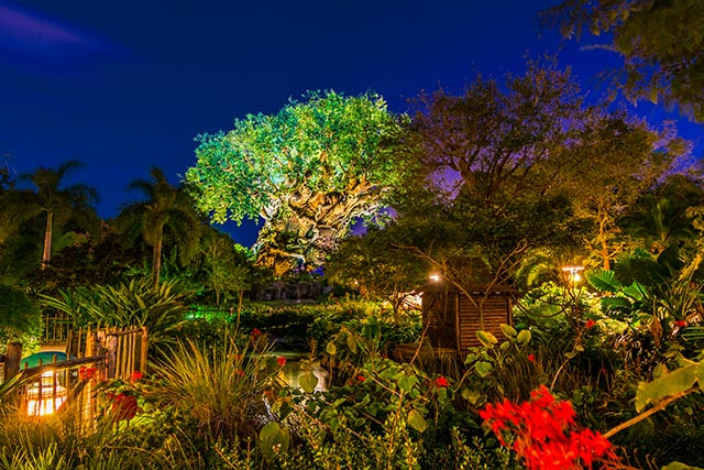The Tree of Live is amazing after dark - by WDW Shutterbug