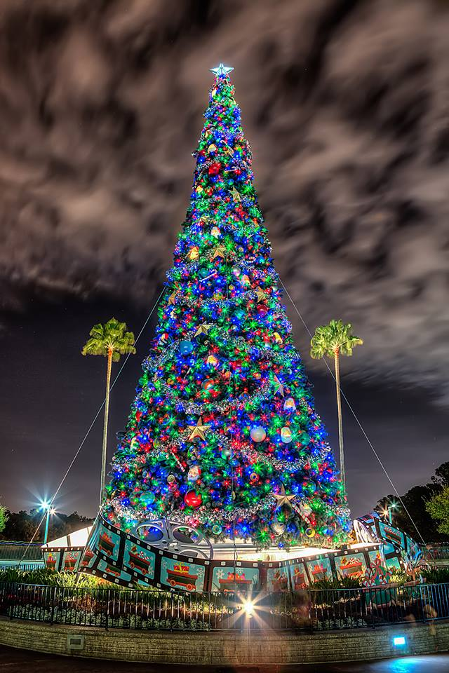disneys hollywood studios christmas tree - What To Get Dad For Christmas 2014