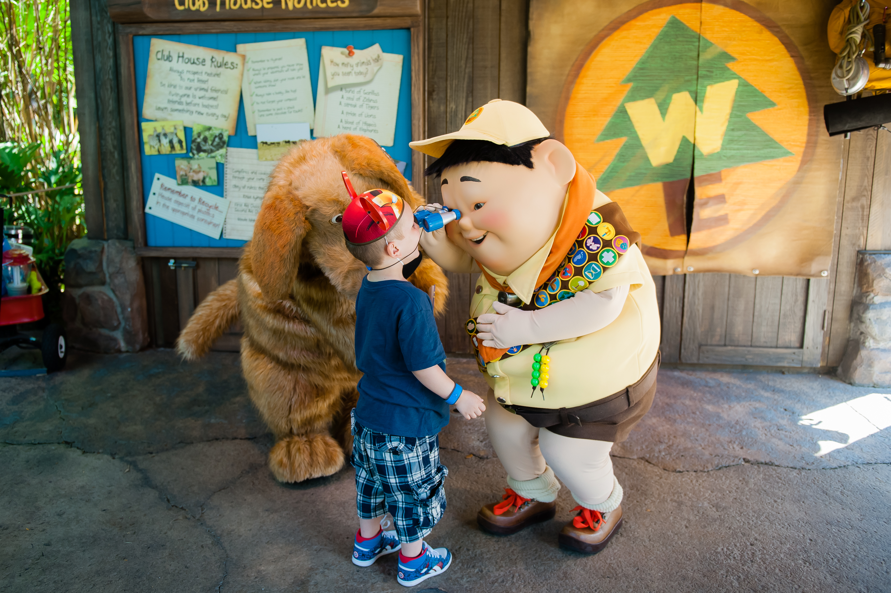 Character meet and greets in animal kingdom meet russell and dug photo by mandy heinz m4hsunfo