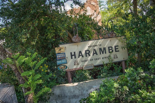Welcome to Harambe. Photo by Judd Helms.