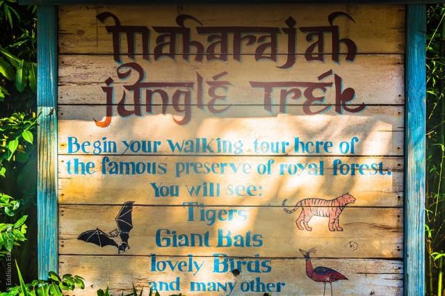 The Maharajah Jungle Trek.  Photo by Eddison Esteban.