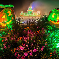 Mickey's Not So Scary Halloween Party is awesome - Photo by Disney Photo Snapper