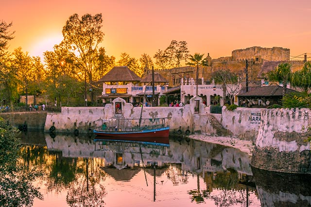 How about a nice sunset over Harambe - Photo by WDW Shutterbug